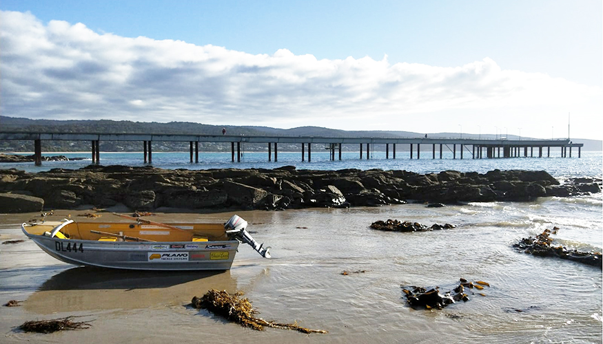 AW Maritime boat with Lorne Pier in background