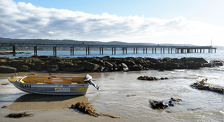 Lorne Pier and AW Maritime boat